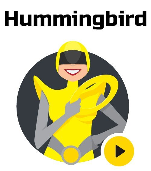 WPMU DEV - Hummingbird v2.0.0.1 - WordPress Plugin