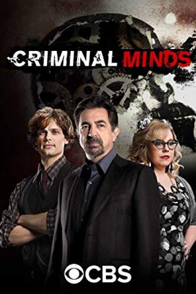 Criminal Minds S14E12 720p HDTV x265-MiNX