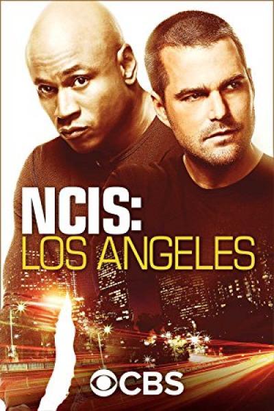NCIS Los Angeles S10E13 720p HDTV x264-AVS