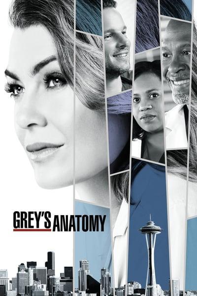 Greys Anatomy S15E09 720p HDTV x265-MiNX