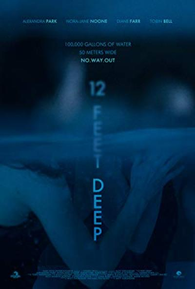 12 Feet Deep 2017 1080p BluRay x264 VETO