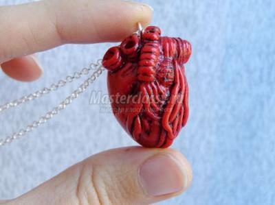 МК Анатомическое сердце из полимерной глины  17c33aa36142c4d7c828b986cb2ec84c
