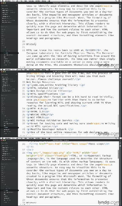 - HTML Essential Training