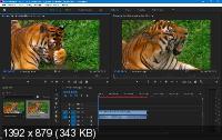 Adobe Premiere Pro CC 2019 13.0.3.8 Portable by punsh