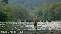 Волчьи горы / The Wolf Mountains (2013) HDTV 1080i