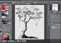 Clip Studio Paint EX 1.8.6 + Materials