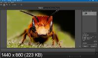 Helicon Focus Pro 7.5.1