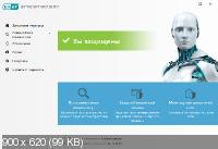 ESET NOD32 Antivirus / Internet Security 12.1.31.0