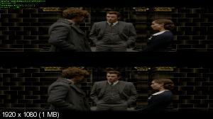 Фантастические твари: Преступления Грин-де-Вальда / Fantastic Beasts: The Crimes of Grindelwald (2018) BDRip 720p, 1080p, 3D (HOU), BD-Remux, Blu-Ray CEE, Blu-Ray 3D CEE