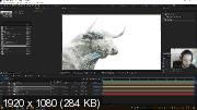 Adobe After Effects. Продвинутый уровень (2019) Видеокурс