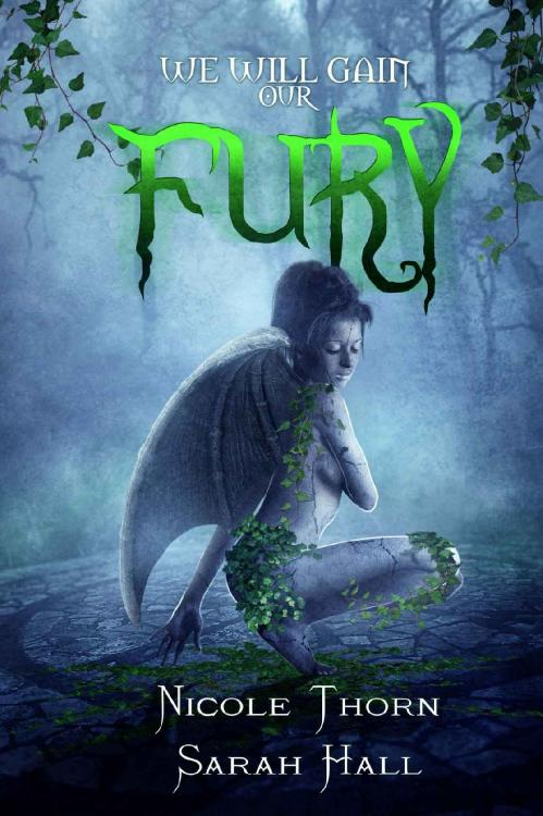 We Will Gain Our Fury by Nicole Thorn, Sarah Hall