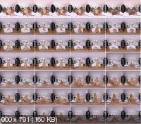 SexBabesVR - Katrin Tequila - Coffee And Tequila (UltraHD/2K/1440p/1.46 GB)
