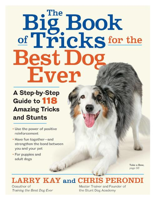 The Big Book of Tricks for the Best Dog Ever A Step by Step Guide to 118 Amazing T