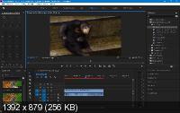 Adobe Premiere Pro CC 2019 13.1.0 Portable by punsh