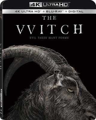 Ведьма / The VVitch: A New-England Folktale (2015) BDRip 2160p | 4K | HDR | Лицензия