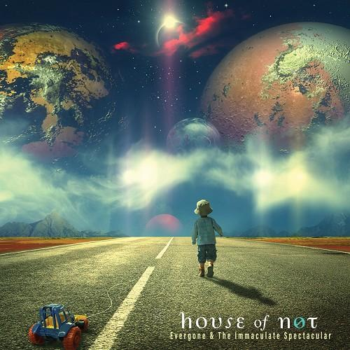 House of Not -Evergone & the Immaculate Spectacular (2018)
