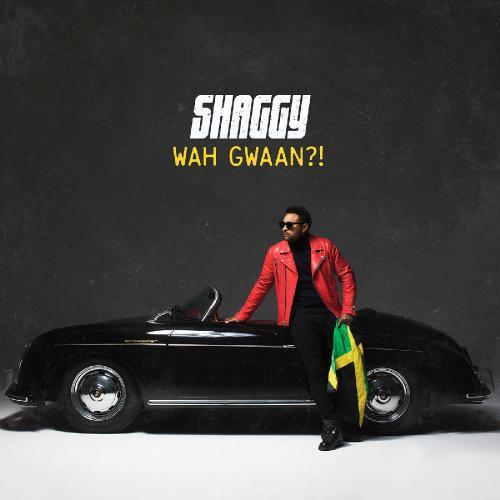 Shaggy - Wah Gwaan (2019)  Album