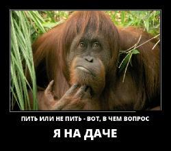 Подборка лучших демотиваторов №405