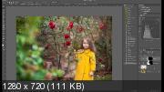 Искусство цвета для фотографов (2019) PCRec