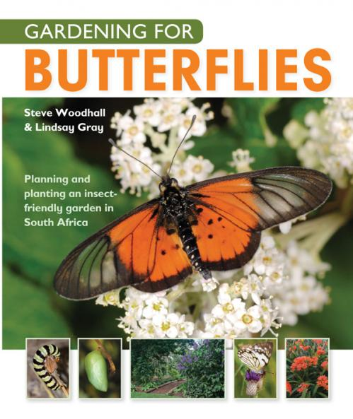 Gardening For Butterflies - Planning And Planting An Insect-Friendly Garden in Sou...