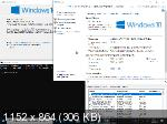 Windows 10 Version 1903 with Update 18362.113 x86/x64 AIO 64in2 by adguard v.19.05.15 (RUS/ENG)