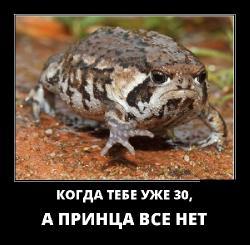 Подборка лучших демотиваторов №407