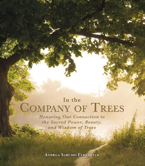 In the Company of Trees Honoring Our Connection to the Sacred Power, Beauty, and W...