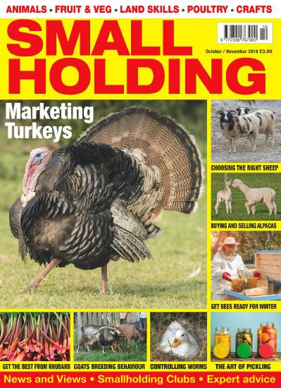Smallholding October (2018)
