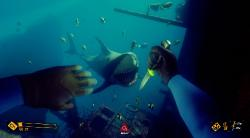 Deep Diving Simulator (2019/RUS/ENG/MULTi9/RePack от xatab)