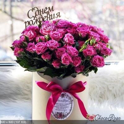 Поздравляем с Днём Рождения Леночку (Лекако) Aef4da713cf63268cfe5a3bde7495b86