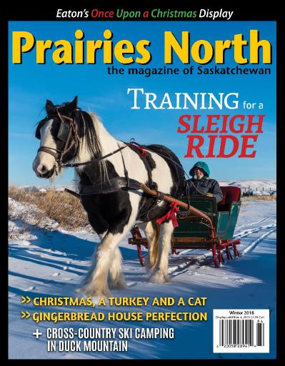 Prairies North Magazine November (2018)