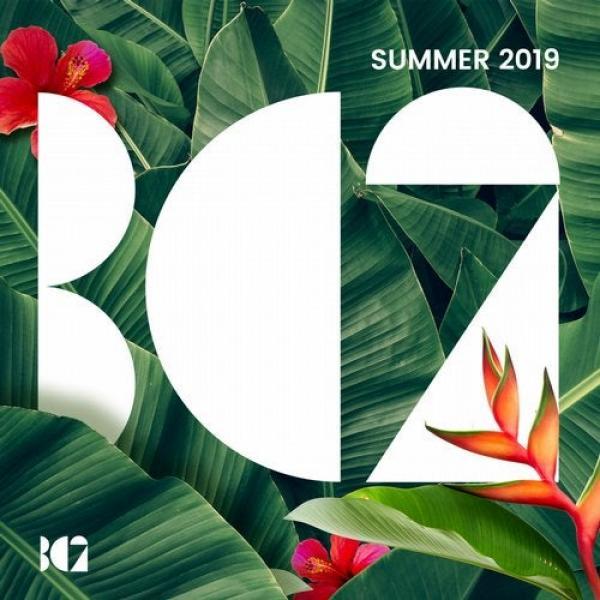 Va Bc2 Summer (2019) Bc(2261)  (2019) Bf