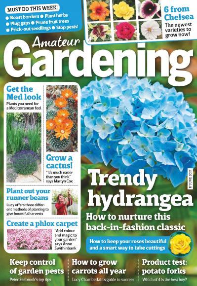 Amateur Gardening 17 June (2017)