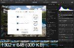 Luminar Flex 1.1.0.3435