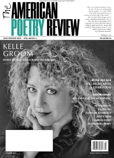 The American Poetry Review   07 2019   08 (2019)